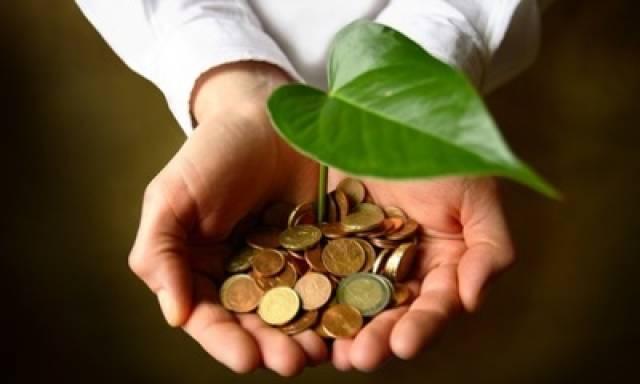 Tư vấn thực hiện các quy định Tài chính, huy động và sử dụng vốn, phân tích Tài chính