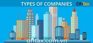 Các loại hình doanh nghiệp hợp pháp tại Việt Nam 2