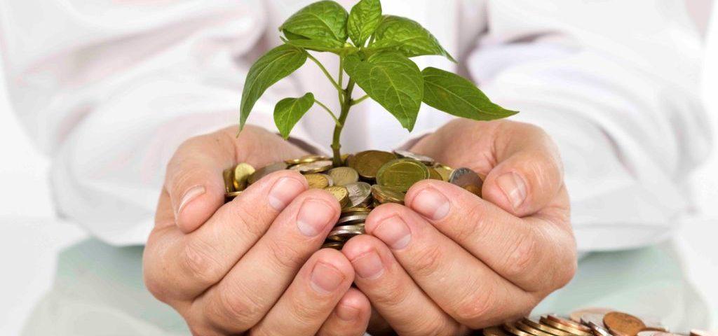Cá nhân được góp vốn tối đa 5% vào tổ chức tài chính vi mô